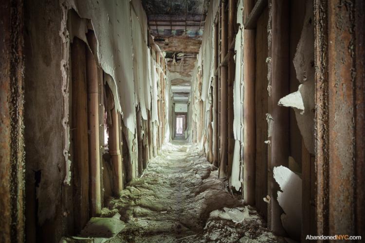 north-brother-island_abandoned-nyc_will-ellis_18.jpg