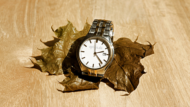 watch_on_dry_leaf_epSos.jpg