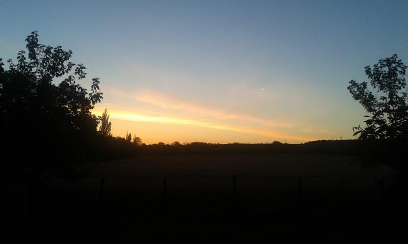 hasad-a-hajnal.png