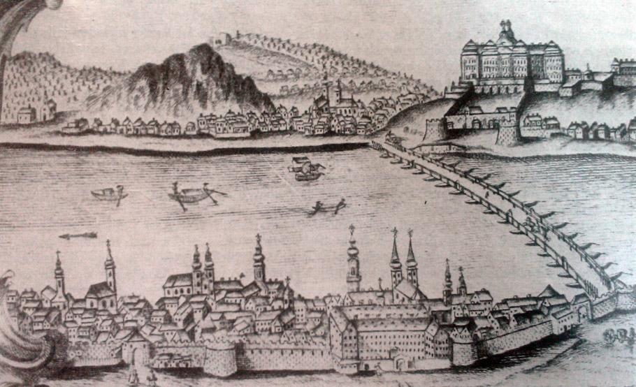 pest-1780.jpg