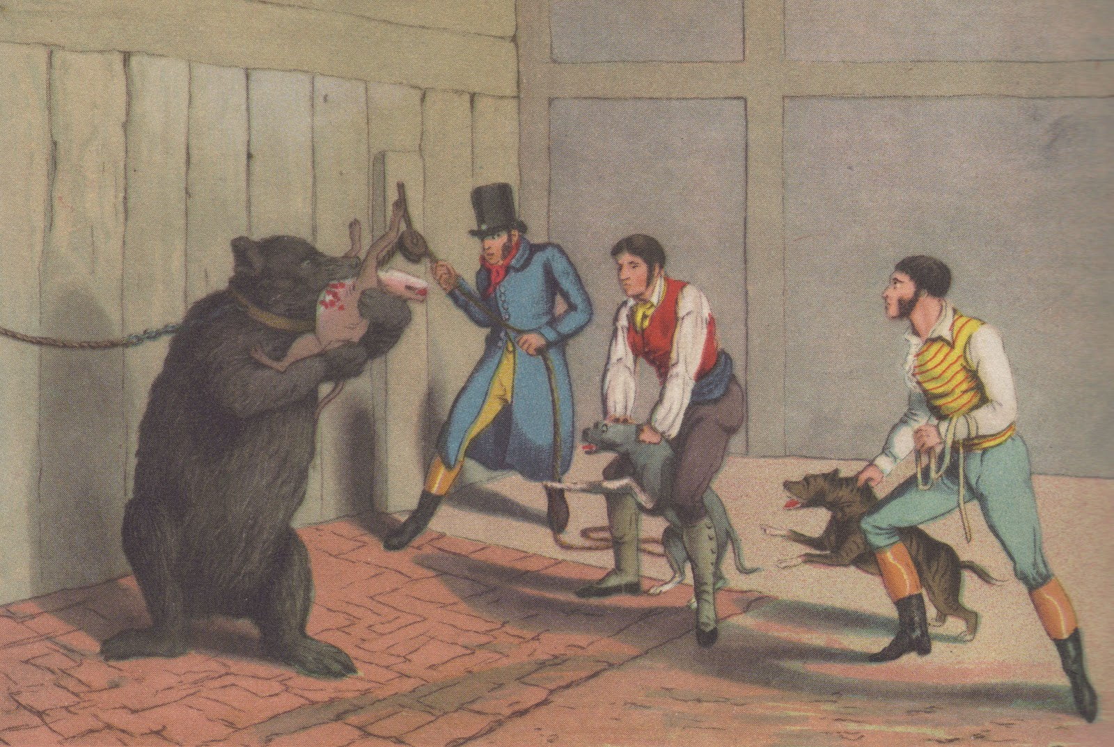 bear bating 2.jpg