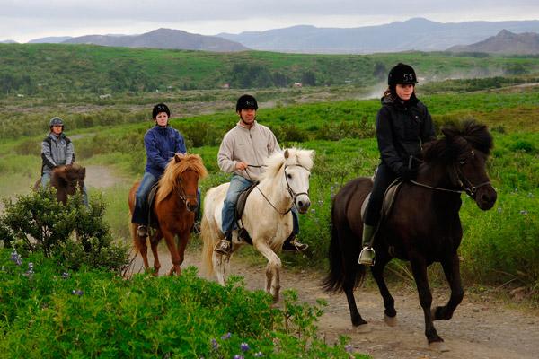 horse-riding-and-atv-tour-0.jpg
