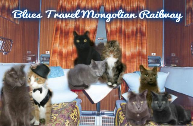 Travelling on the Mongolian Railway