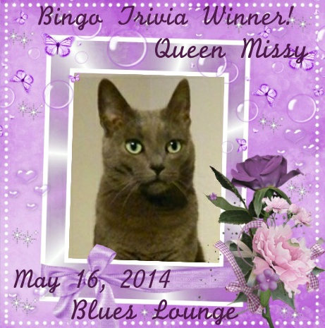 Bingo Winner on Cathugger