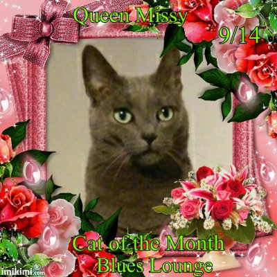 Queen-missy-cat-of-the-month-9-14.jpg