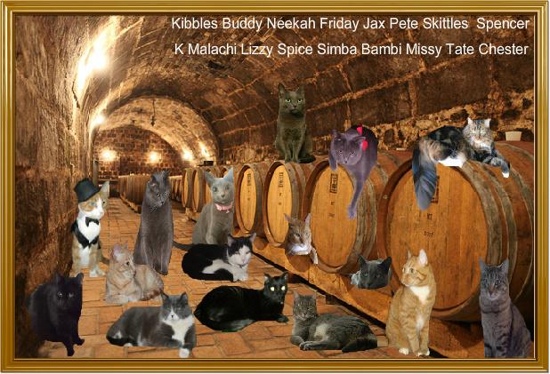 Etyek wine cellar