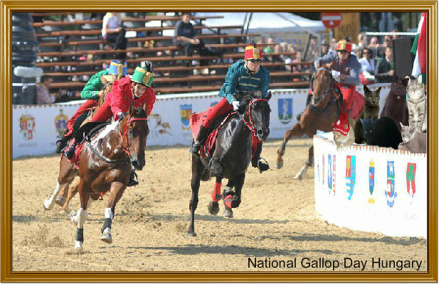 National Gallop Day
