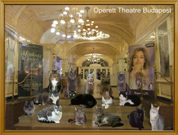 Operett Theatre