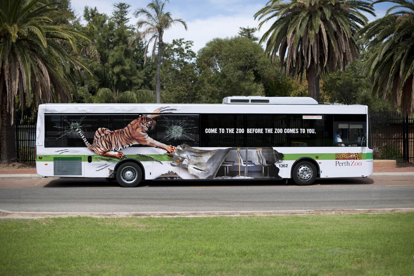Perth-Zoo-Tiger-Bus.jpg