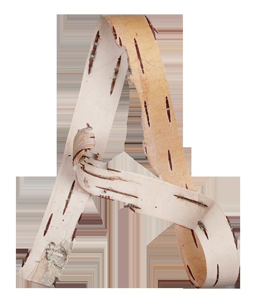 birch-bark-font-poster2.png
