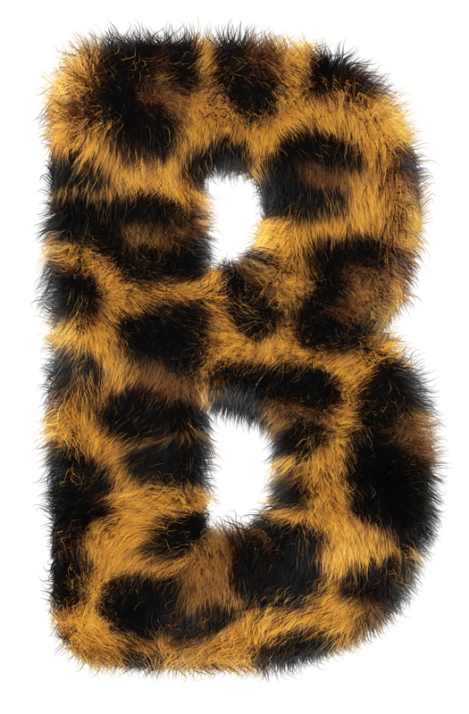 leopard-poster2.png