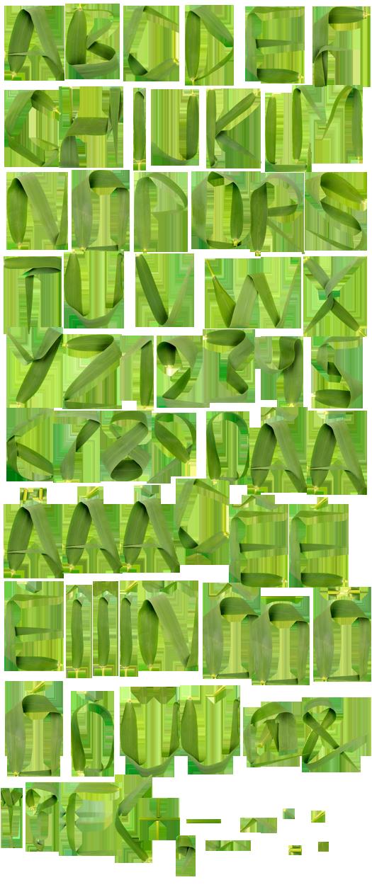 reed-font-alphabet.png