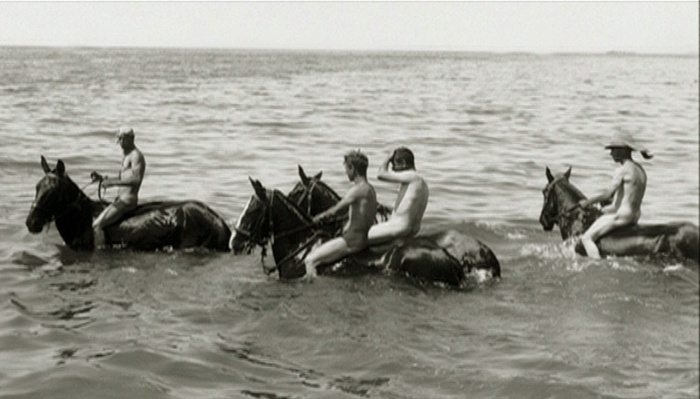 horses_bathing.jpg