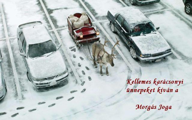 Kellemes karácsonyi ünnepeket Morgás Joga.jpg
