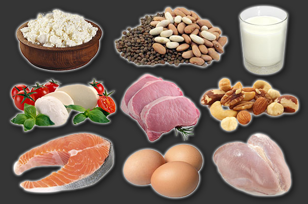 protein-rich-foods-mtb_1.jpg