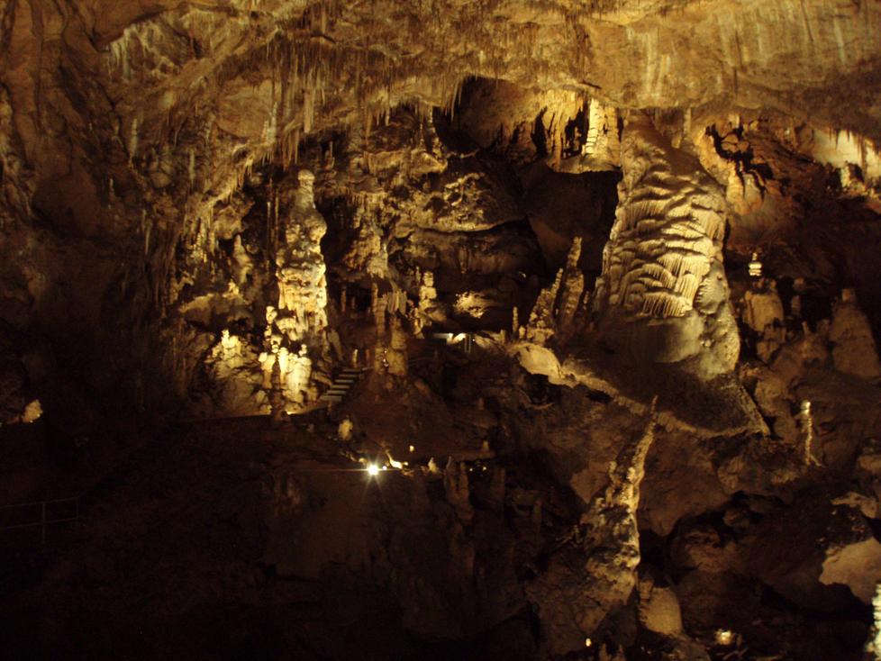 A Baradla-barlang nem csak zoológiai szempontból izgalmas, de látványnak sem utolsó. Fotó: Forró László