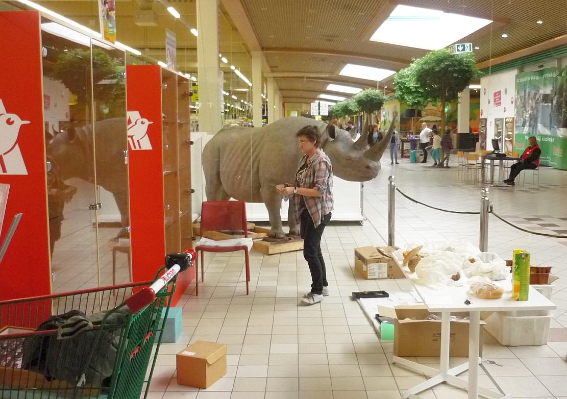 Ásványok az Auchanban