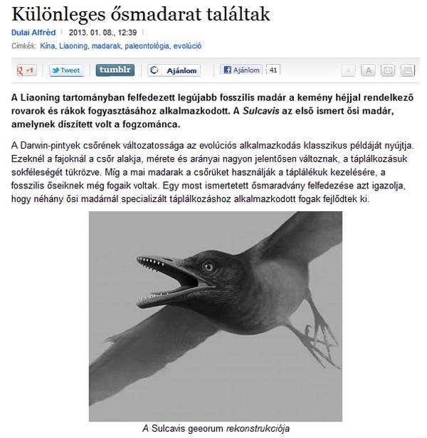 Dulai Alfréd: Különleges ősmadarat találtak (Origo)