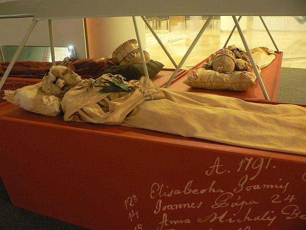 Nemzetközi tudományos szenzációt hozott a magyar múmia