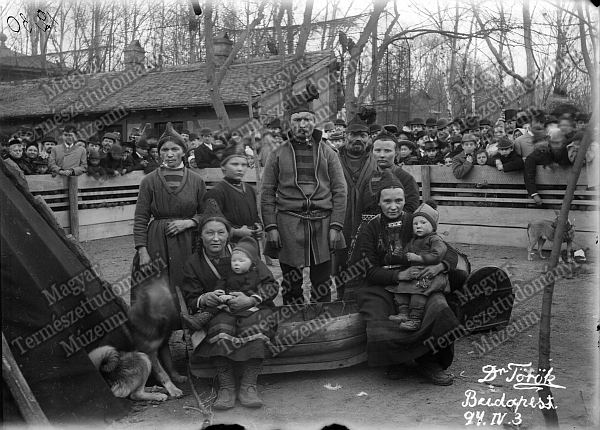 Lappok a Városligetben, 1894