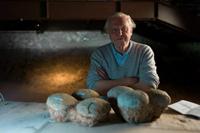 Az Állatvilág története Sir David Attenborough-val a National Geographic csatornán.