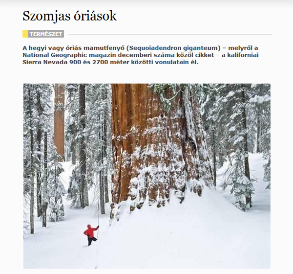 Rácz István: Szomjas óriások (National Geographic)
