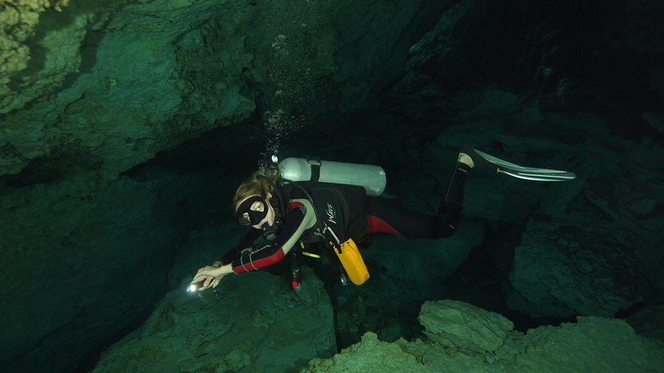 Merülés egy csodás víz alatti világban. Fotó J. Vega