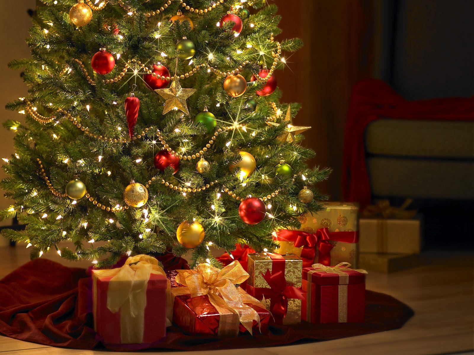 christmasTree1.jpg