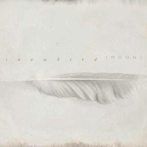 snowbird-album2.jpg