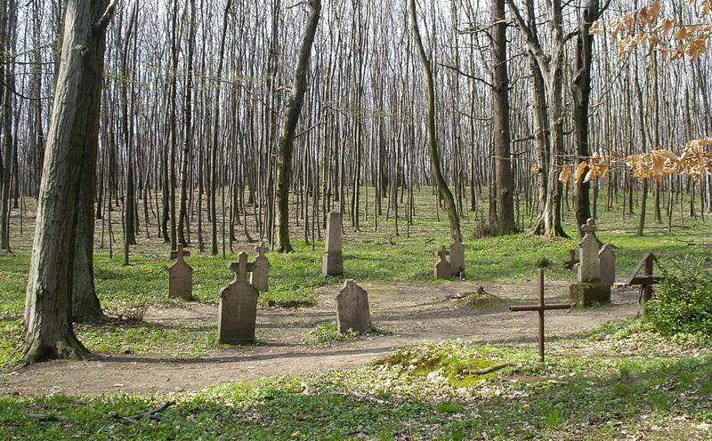 Körtvélyesi_erdei_temető.jpg