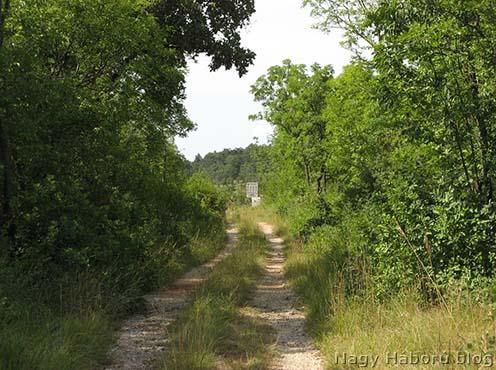 A San Martino del Carsóból északra kivezető murvás út, végén a kerítéssel