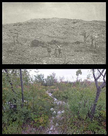 A Monte San Michele egyik csúcsa 1916 őszén (fent) és ugyanaz a csúcs 2012-ben (lent)