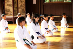 image_okinawa_karate.jpg