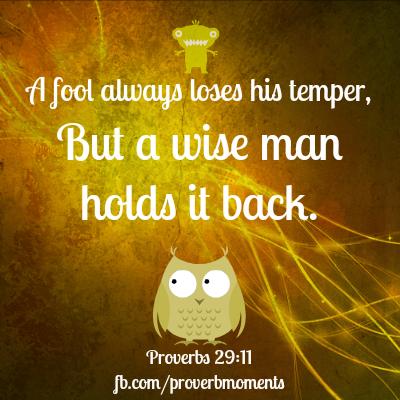 Proverbs 29 v11 photo.png