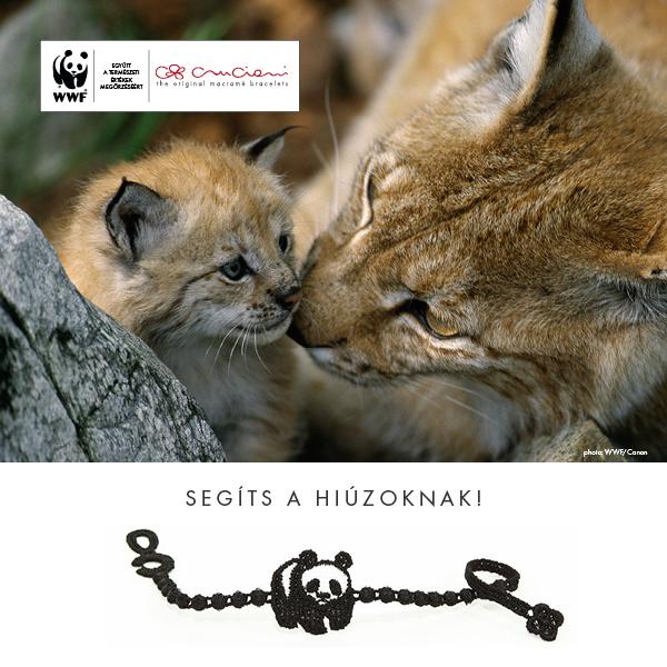 WWF_CRUCIANI_post_FINAL.jpg