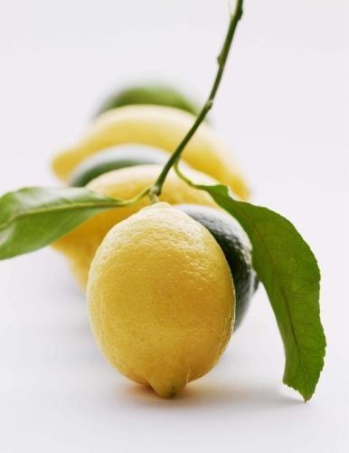 lemonka.jpg