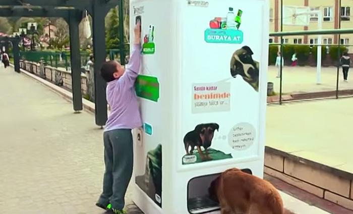 stray-dog-food-vending-machine-recycling-pugedon-4.jpg