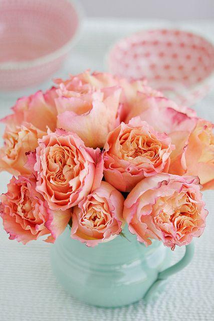 bagdy emőke virág.jpg