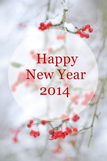 happy new year3.jpg