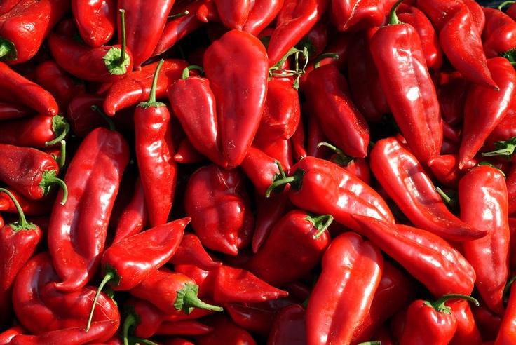 red paprika.jpg