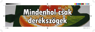 derek.png