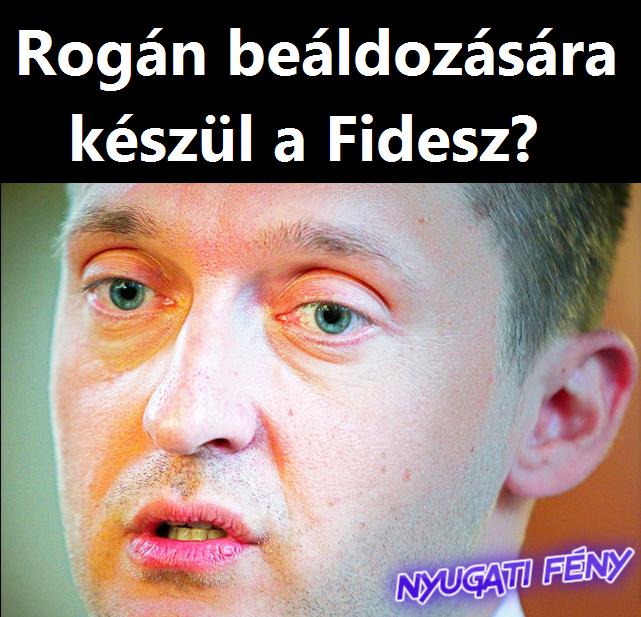 rogannyf.png