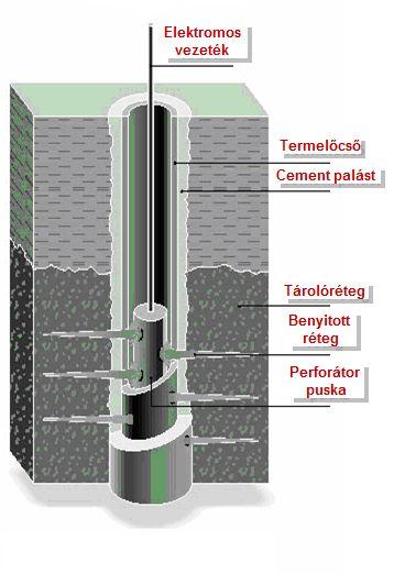 palagáz2.jpg