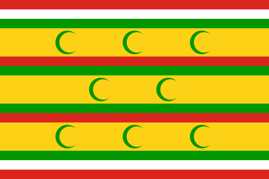 _3_flag.png