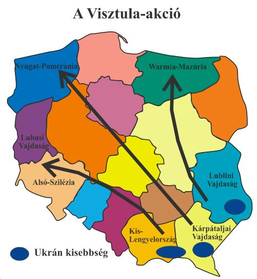 visztula_akció.png