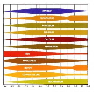 Mit jelent a talaj pH -értéke a kertész számára?