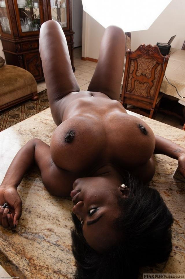 Lexy Shay