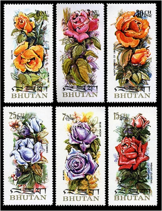 rózsaillat.jpg