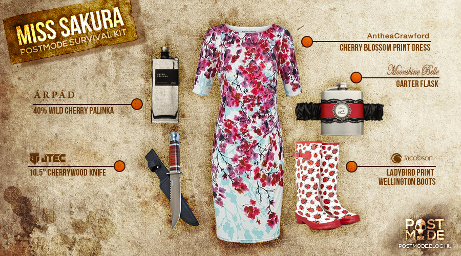 miss-sakura-survival-kit.jpg
