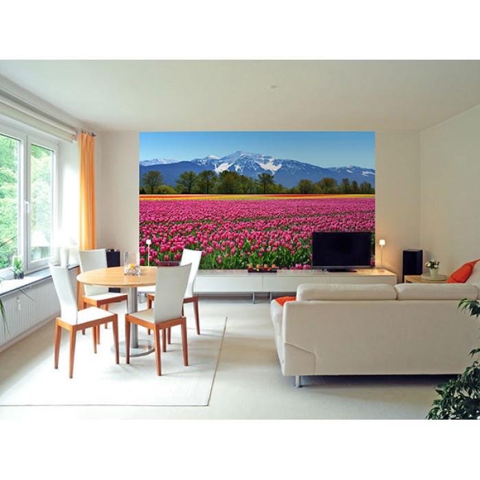 Tulipán fotótapéta<br /><br />http://www.oriasposzter.hu/viragok-es-novenyek/137-tulips.html
